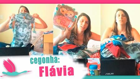 Cegonha-Importadora-por-Flávia-450px